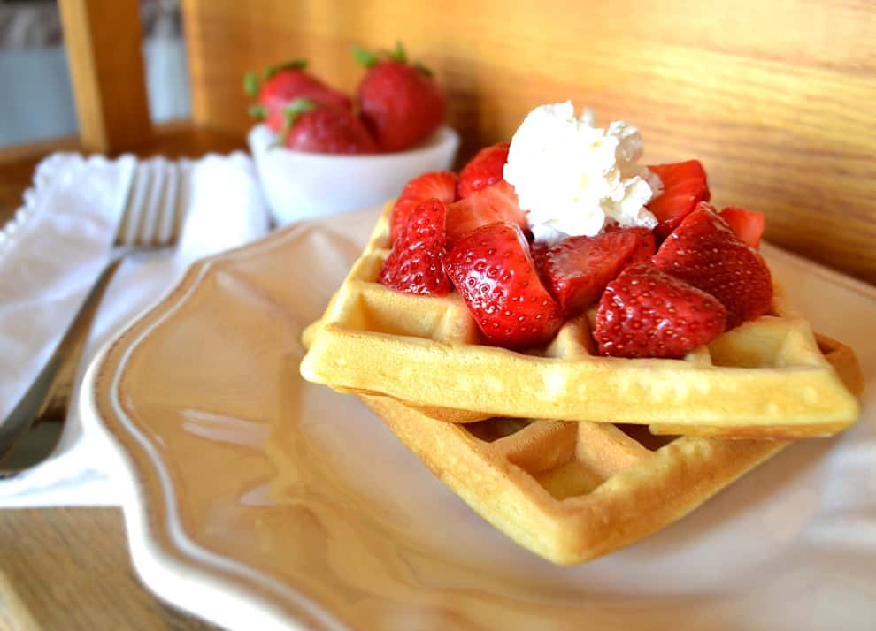 Our Favorite Waffles - Easy Waffles - Waffles of Insane Greatness - craftycookingmama.com