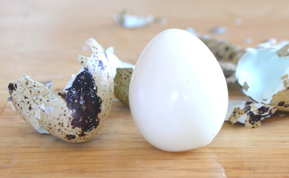 Hard Boiled Quail Eggs | www.craftycookingmama.com