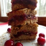 Chocolate Chip Cranberry Oatmeal Squares Bars