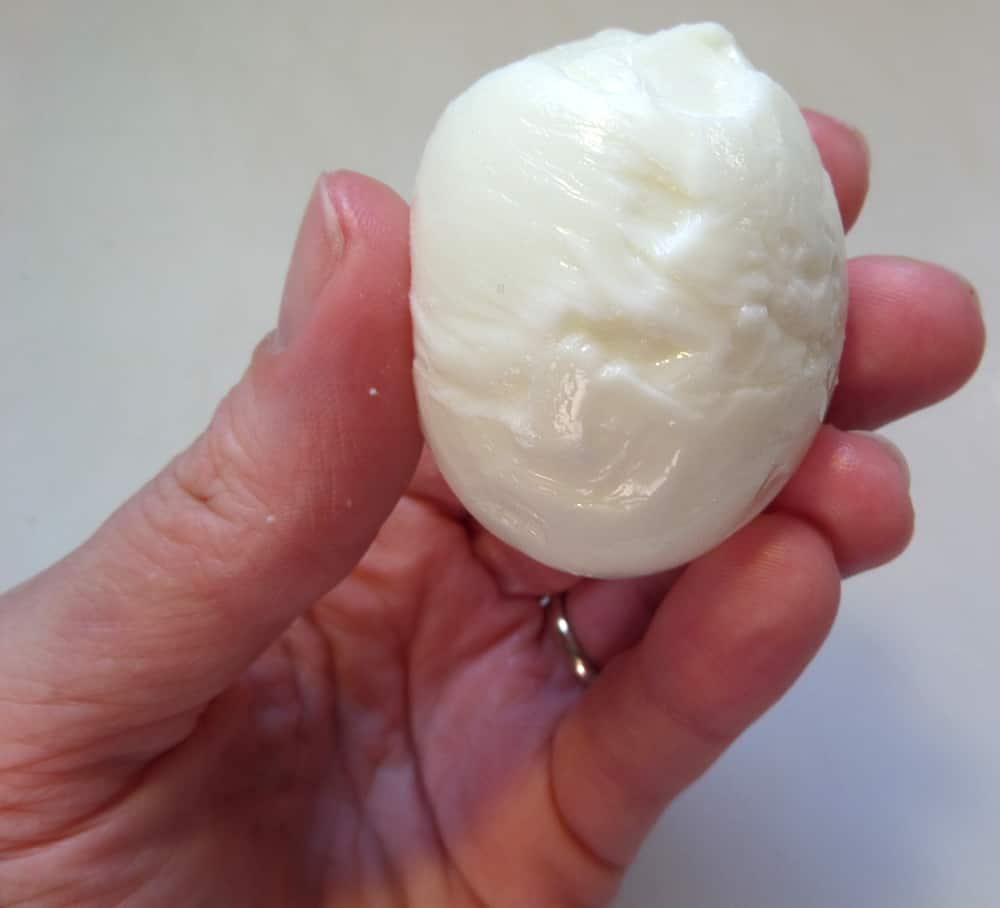 The Eggzperiment