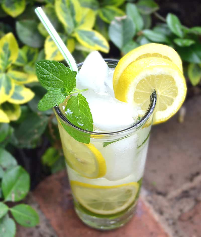 What to Do With All The Mint That Grows - PA Dutch Meadow Tea - Amish/Mennonite Fresh Mint Iced Tea - Lancaster County - craftycookingmama.com
