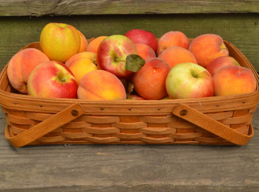 Kauffman's Fruit Farm Gift Box - Mix 'n Match Homegrown Fruit | Fresh Apples & Peaches | Lancaster County, Bird in Hand, PA | Fresh Lancaster Produce | craftycookingmama.com