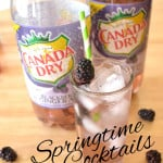 Gin & Canada Dry® Blackberry Ginger Ale | Simple, Refreshing, Delicious & Beautiful Springtime Cocktail | www.craftycookingmama.com