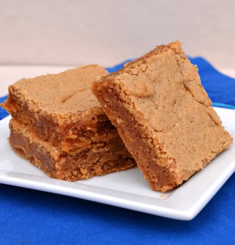 Peanut Butter & Cinnamon Blondies