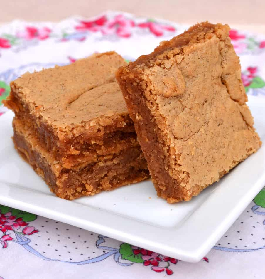Peanut Butter & Cinnamon Brownies Blondies